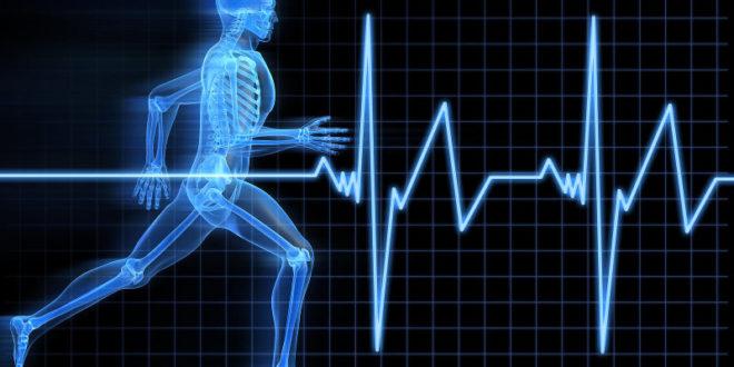 SPORTHO- India's 1st destination for sports medicine !