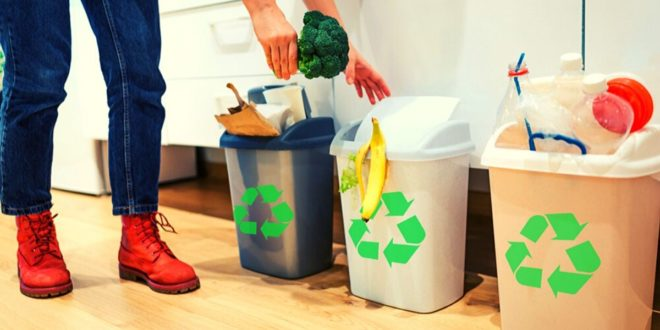 Simple Ways to Segregate Waste at Home & Office !