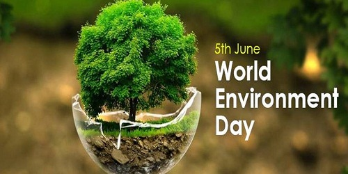 World Environment Day 2020:The year of flexibility, change, variation & evolution !