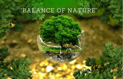 Maintaining the balance in Nature