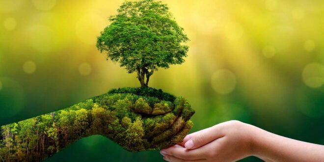 Save a tree, save a life..Plant a tree, plant a life !