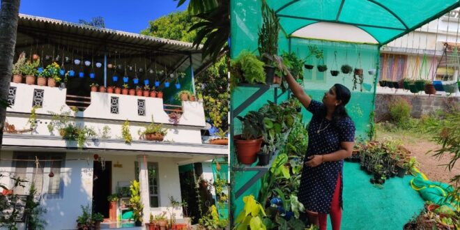 Kerala Housewife earns by selling variety of plants grown on her Terrace !