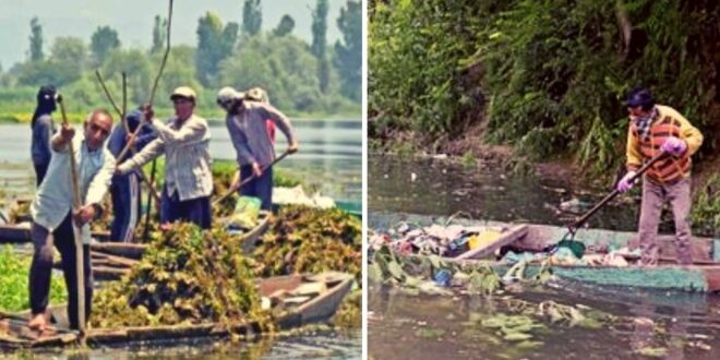 Locals and the government join hands to clean up Khushal Sar Lake in Srinagar